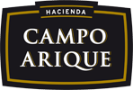 Campo Arique